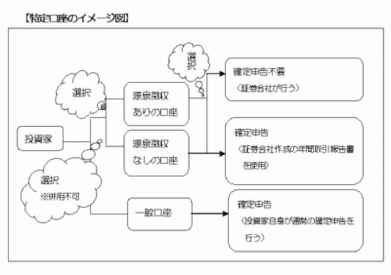 特定口座の分類と概要(図表イメージ作成:筆者)