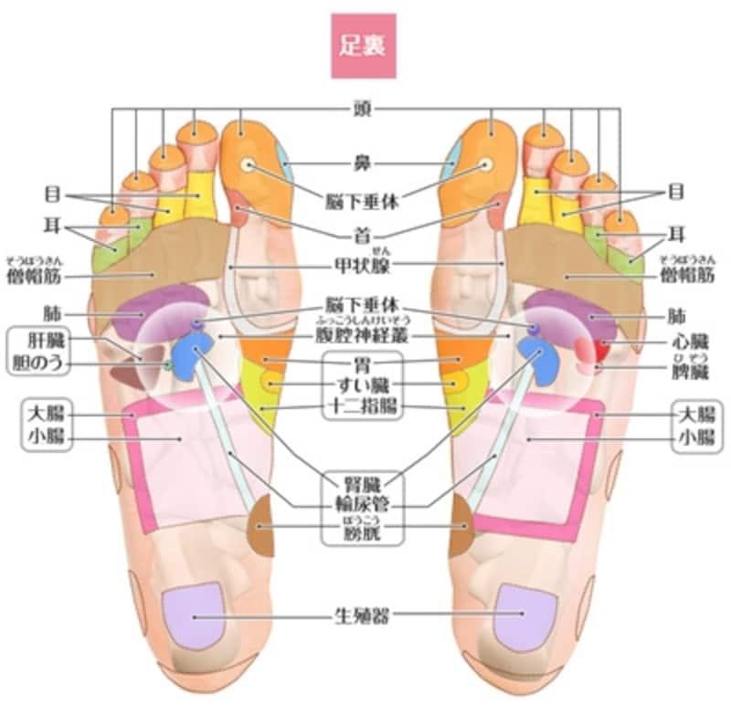 足 の 裏 痛み ツボ