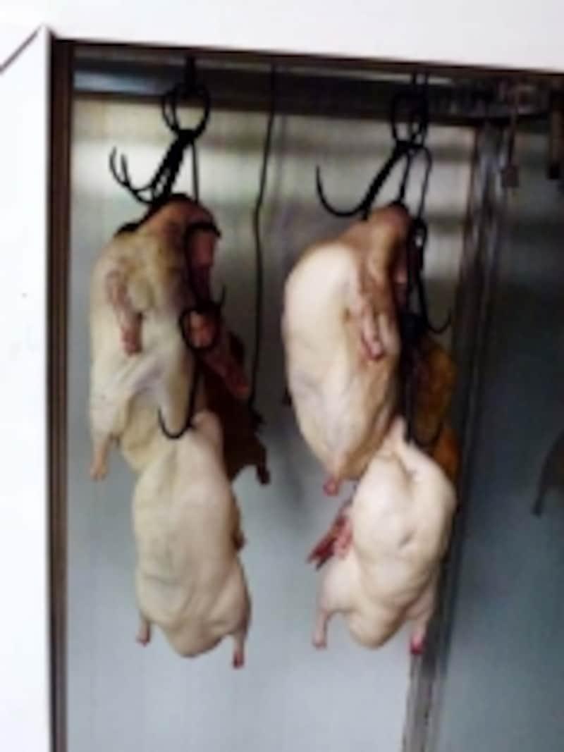 北京ダックレストラン「利群【火考】鴨」