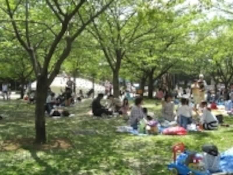 江戸川区の公園