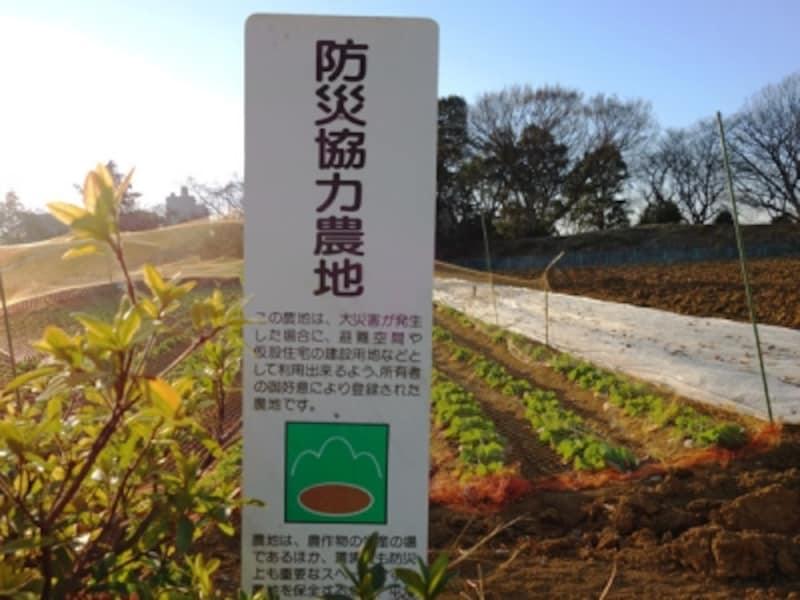 防災協力農地