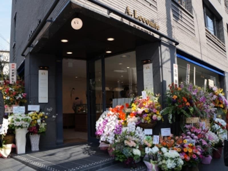 緑あふれ、ゆったりとした贅沢な時間が流れる東京・広尾。その一角に店舗がOPEN。