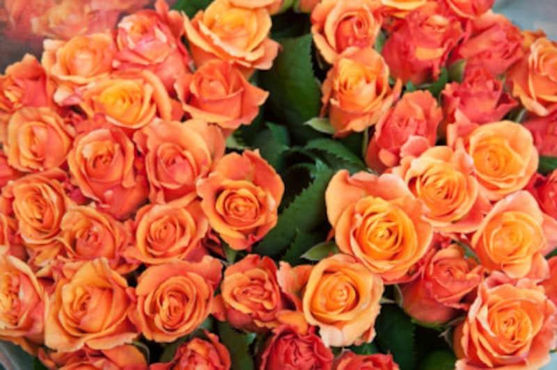プリザーブドフラワーの作り方!意外と簡単なお花のアレンジ加工