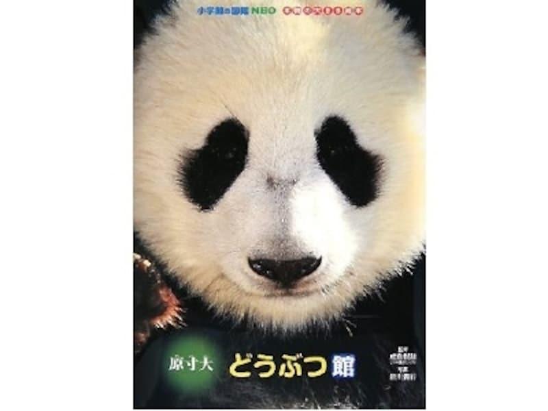 迫力の原寸大。動物園での体験と併せると、リアル感がアップする図鑑です