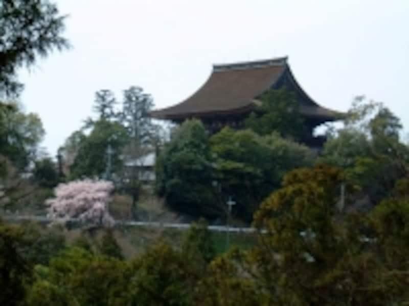 金峯山寺・蔵王堂(1)/桜と共に