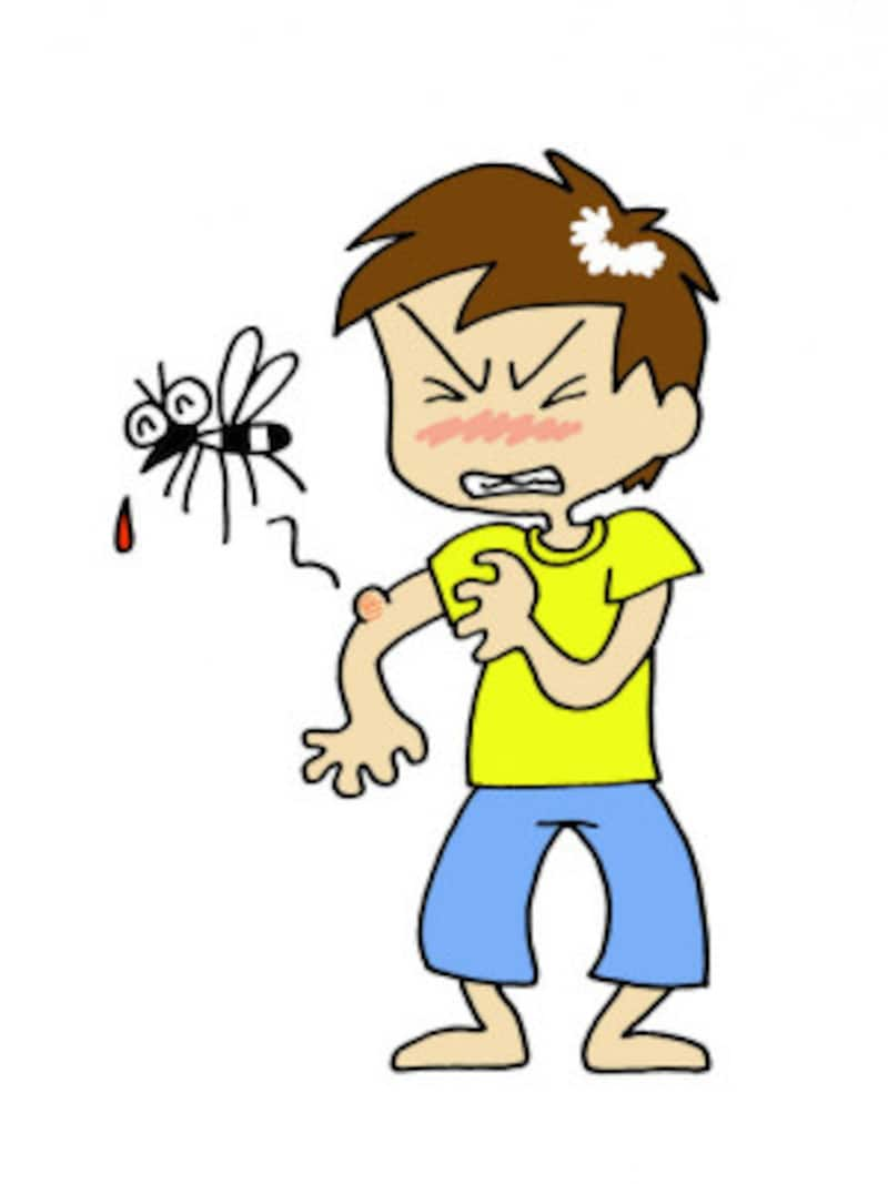 虫除けスプレーとして、アロマオイルがたくさん活用されています
