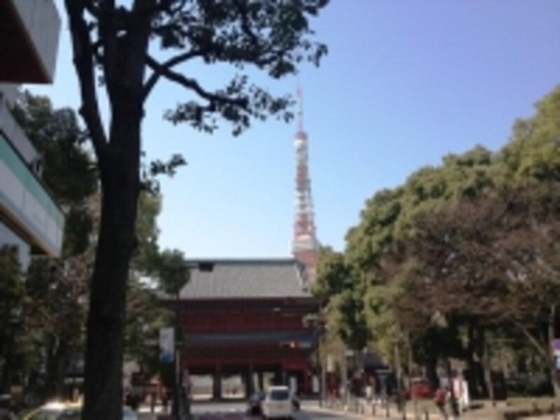 同店近くには増上寺や東京タワーも