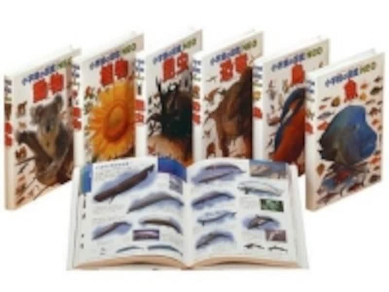 生き物の図鑑をセットにした「小学館の図鑑NEOいきもの総合学習・6冊セット(12600円)」