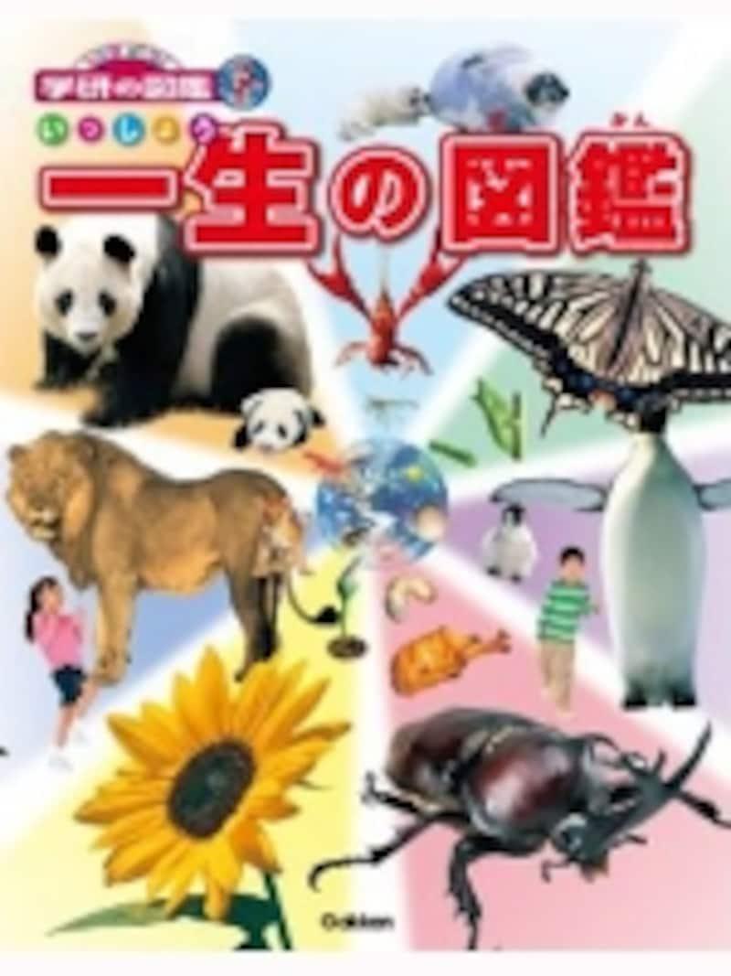 生き物の一生を写真で紹介する「一生の図鑑(1995円)」
