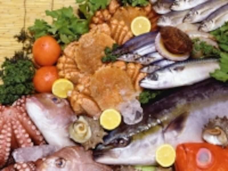 初物の魚介類