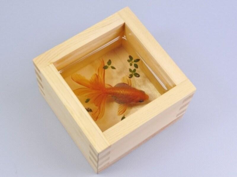 金魚酒-夕姫undefinedkingyosake-YUKI(2012年)