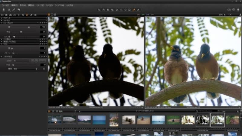 CaptureOnePro7のインターフェイス。ノイズ除去など補正ツールのすべては柔軟で細かな調整により、高品質な写真に仕上げる。