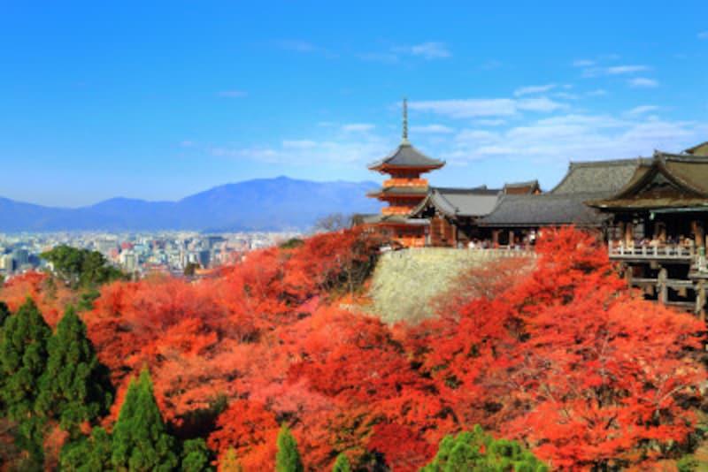 金閣寺をはじめ、京都の世界遺産はおおむねバリアフリー対応が整っています