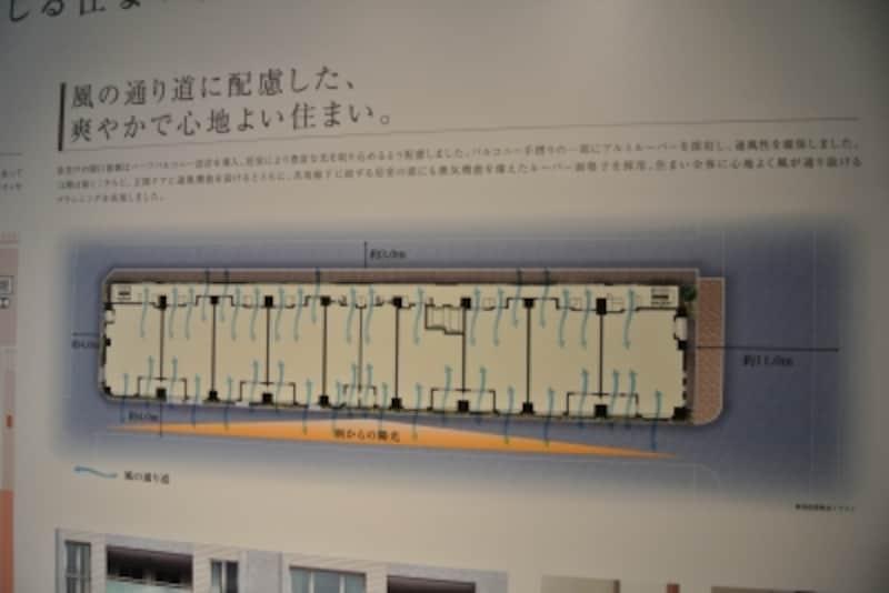 プラウド東京八丁堀の敷地配置図