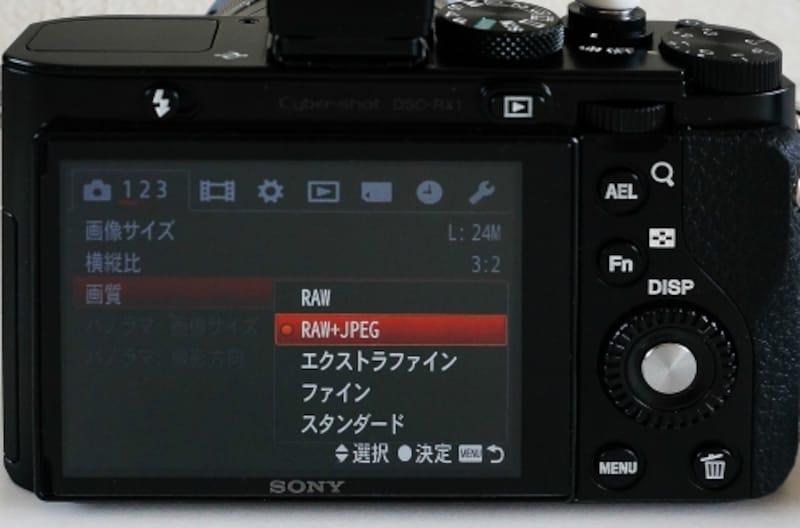 デジタルカメラ設定画面。Rawのみ、Raw+JPEG、JPEGのみの3通りが選べる例。