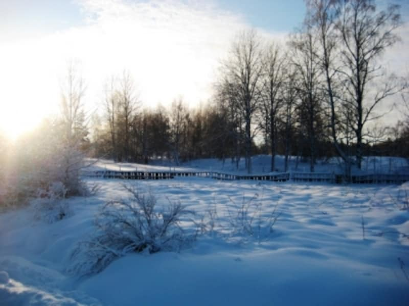 vintersverige2
