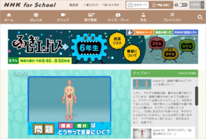 NHKforschoolふしぎエンドレス6年生