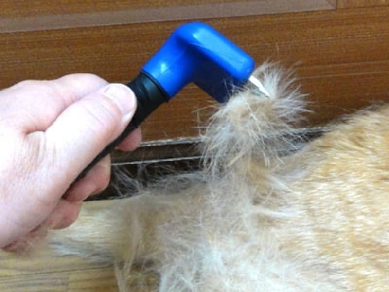 ファーミネータでごっそり毛が取れます