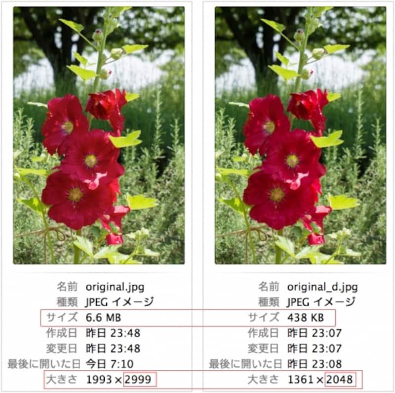 左が元の写真。右はFacebookにアップロードした写真をダウンロードしてサイズを比較した例。ファイルサイズは6.6MBから438KBに、ピクセルサイズは長辺が2999ピクセルから2048ピクセルにそれぞれ縮小されている。