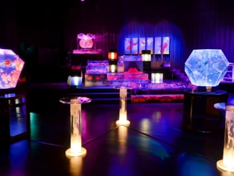 アートアクアリウム展2012の様子