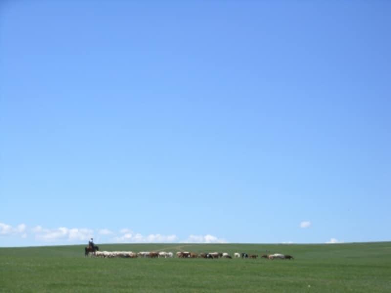 馬に跨った羊飼いが家畜と共に暮らす。幾世紀も変わらぬ草原の景色