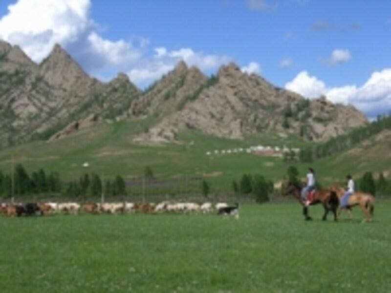 馬は草原の民の生活の足