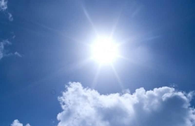 今年の夏は例年よりさらに暑い模様・・・
