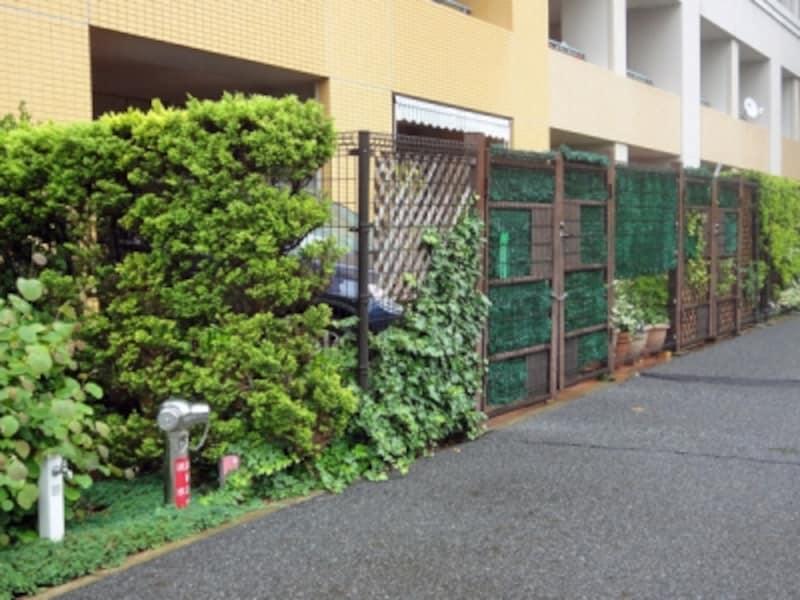 専用庭の駐車場