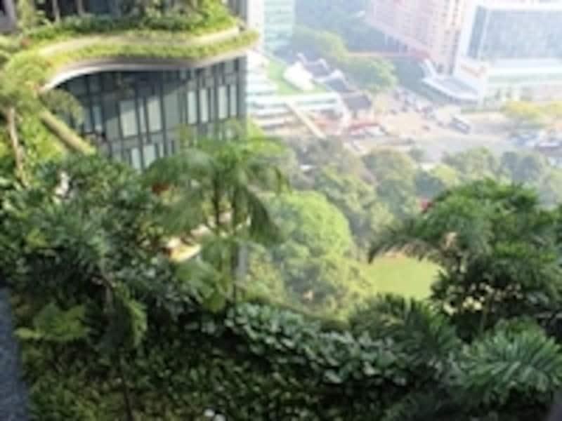 ガーデントレイル