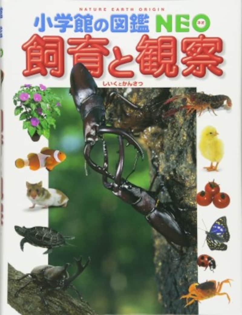 理科の自由研究におすすめの『小学館の図鑑NEO飼育と観察』