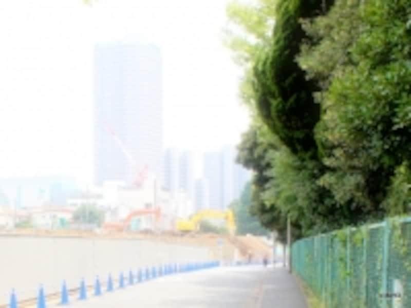 現地(左)<2013.7.12撮影>