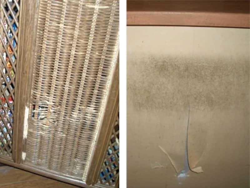 猫の爪とぎで傷だらけの籐のスクリーンと壁紙。猫と快適に暮らすには、材料選びとプランにちょっとしたコツが必要