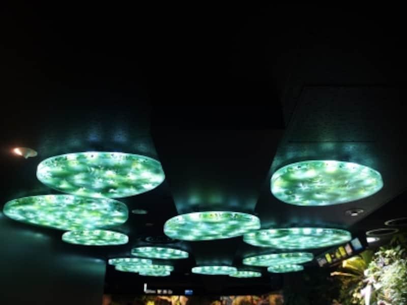グリーンの照明