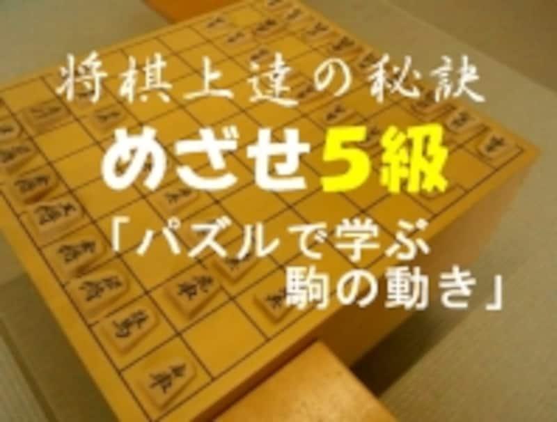 パズルで学ぶ駒の動き