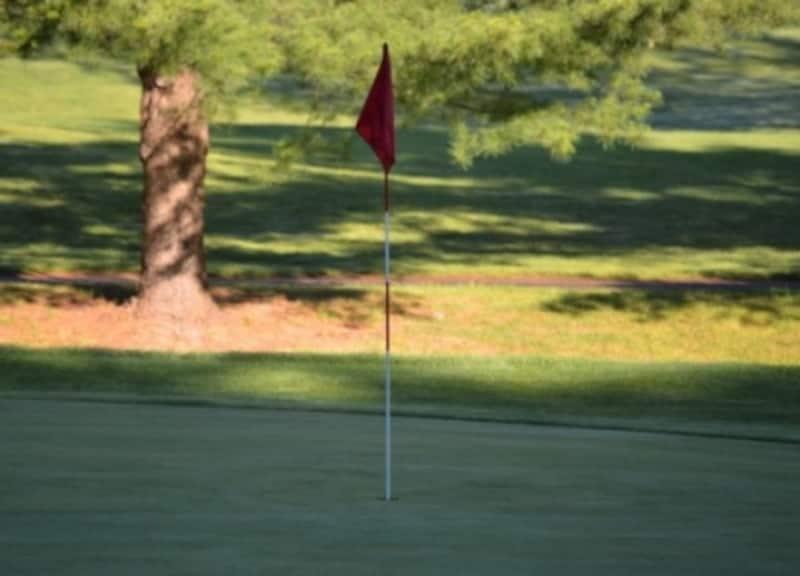 素晴らしい技をいくつも持ち自在に操り挑むので、負けるわけがないのです。それゆえに誰もが彼のゴルフを楽しみに観戦している
