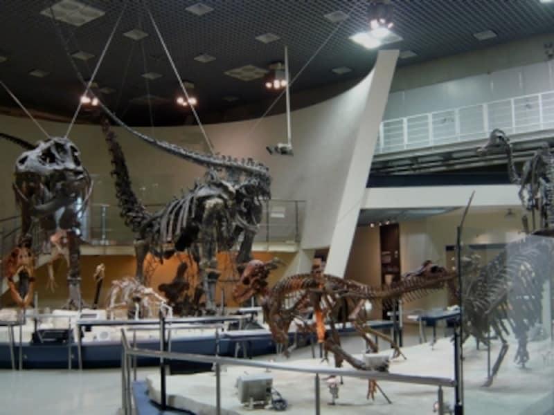 展示室の恐竜たち