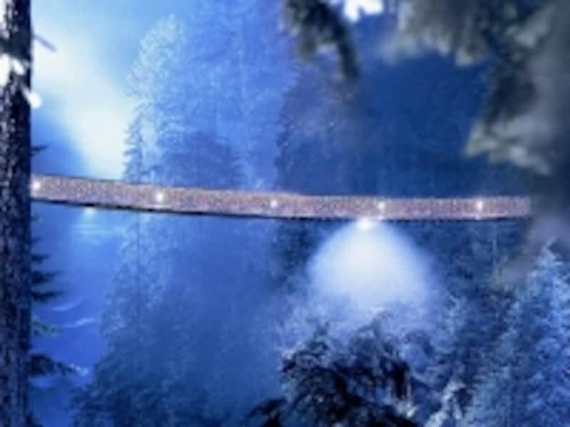 イルミネーションが点されたクリスマスシーズンの吊り橋。クリスマスシーズンもおススメ(C)CapilanoSuspensionBridge