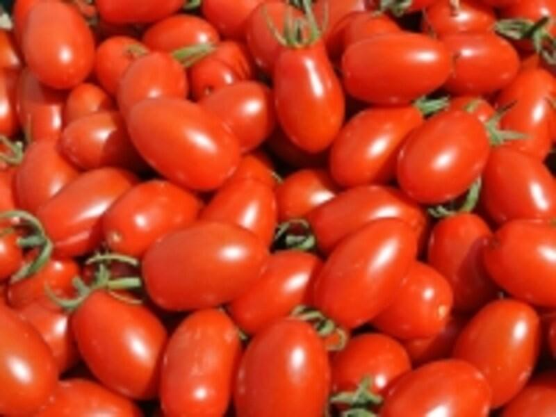 糖度8度を超えるフルーツトマトで、甘くてしっかりした肉質が特徴