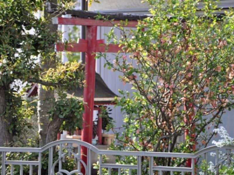 敷地内に立てられた鳥居と祠