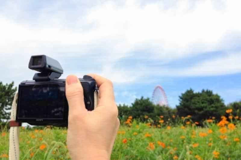 デジタルカメラのWi-Fi機能、活用してますか?