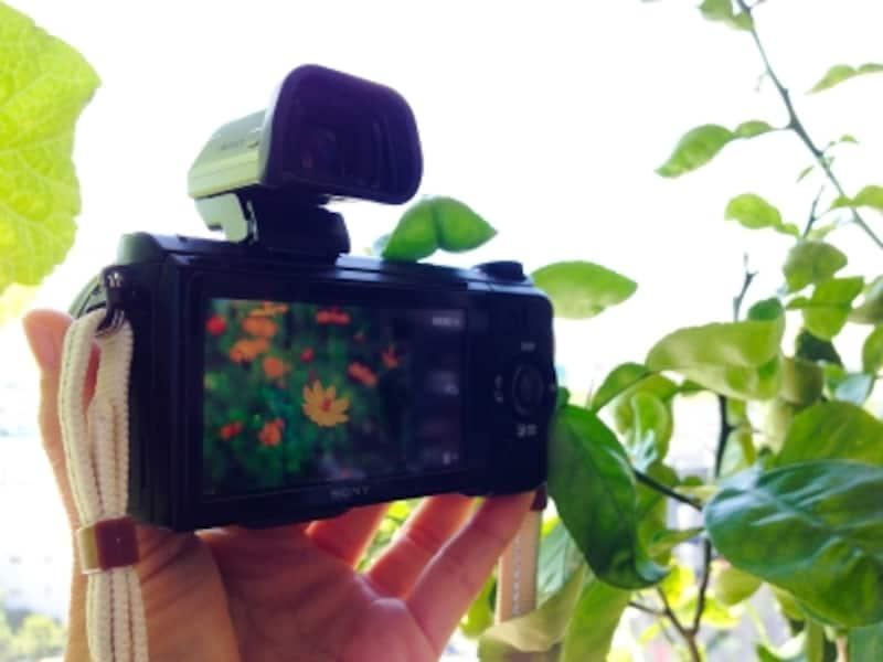 デジカメから転送した写真をモニターに映しだします。