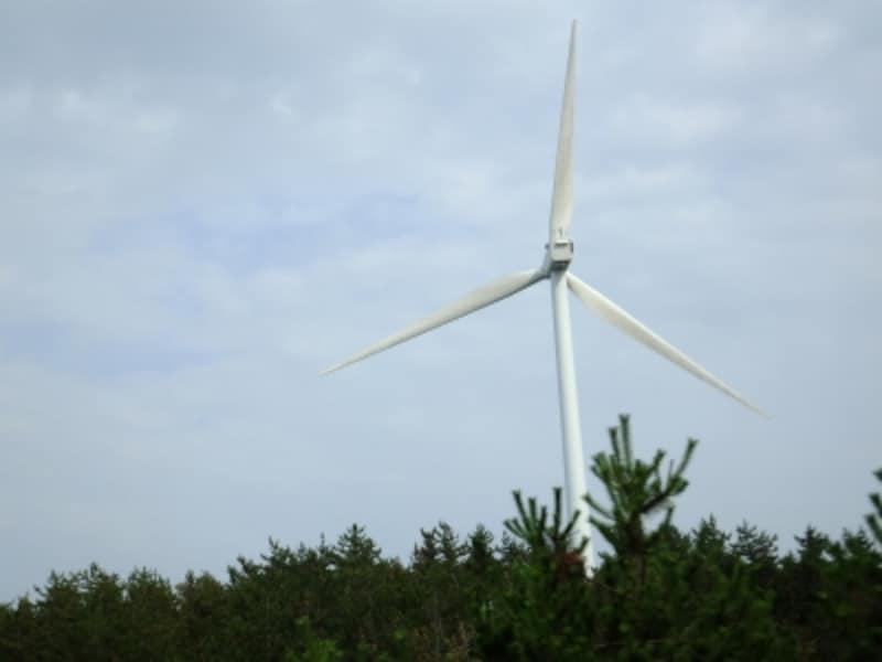 再生可能エネルギーのひとつ、風力発電。風さえあれば、昼夜問わず発電が可能。