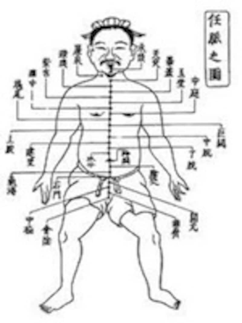 身体を流れるエネルギー「経絡」と中継点である「経穴」