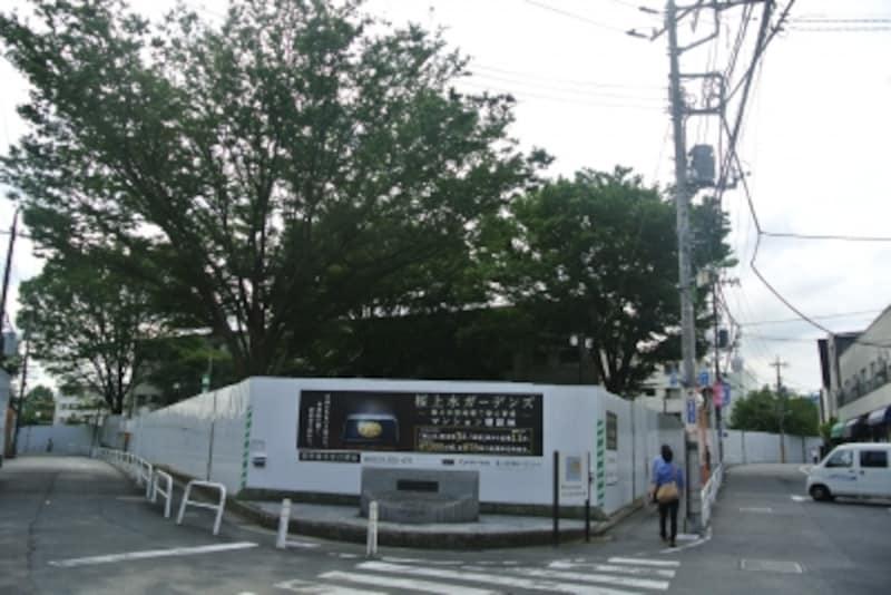 桜上水ガーデンズの現地