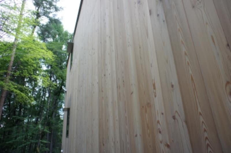 森の中の木の外壁