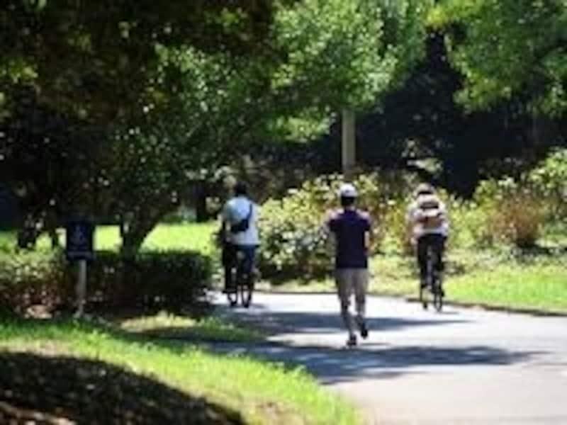公園で運動する人々
