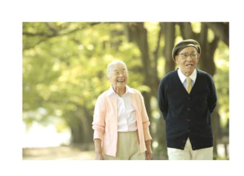 税制を味方にした厚生年金加入者が加入できる私的年金の紹介