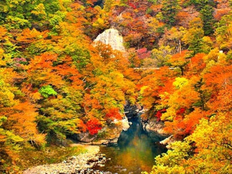 塩原渓谷の紅葉
