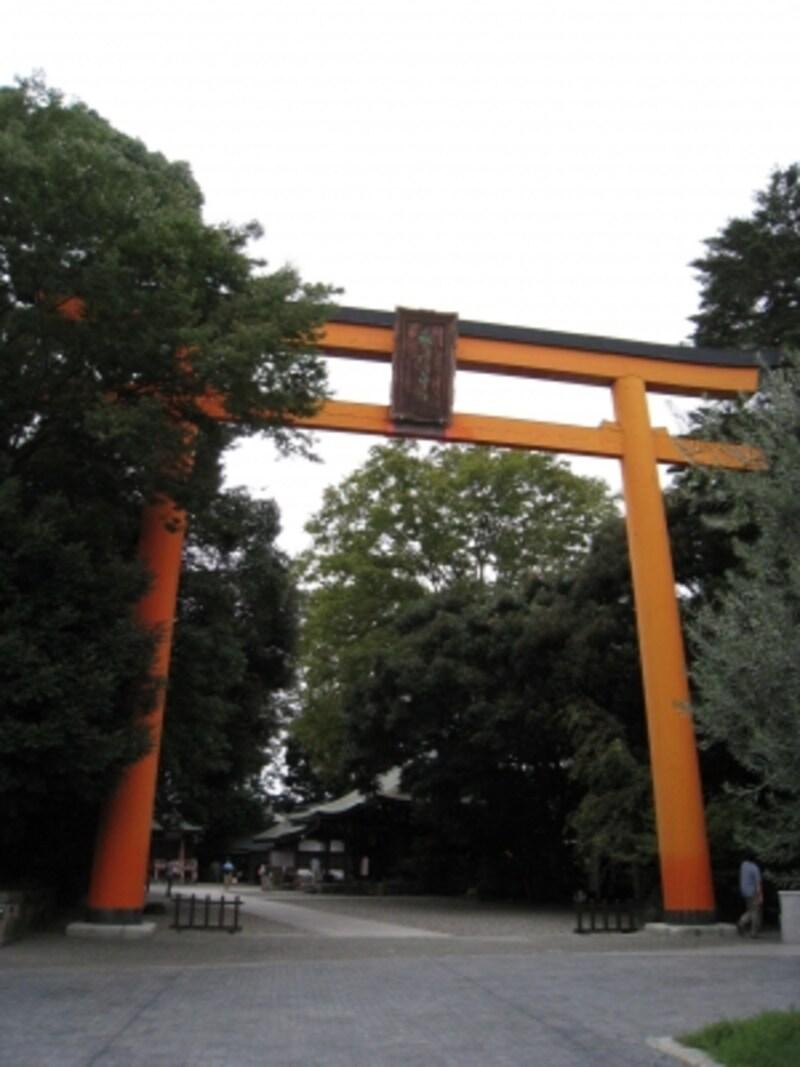氷川神社の鳥居