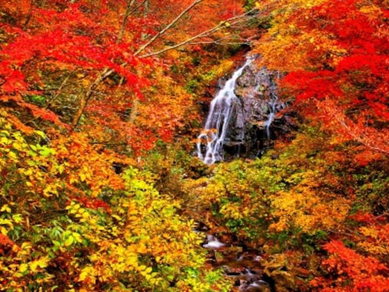 不動滝と紅葉